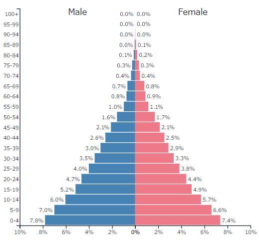 2019年イラクの人口ピラミッドグラフ