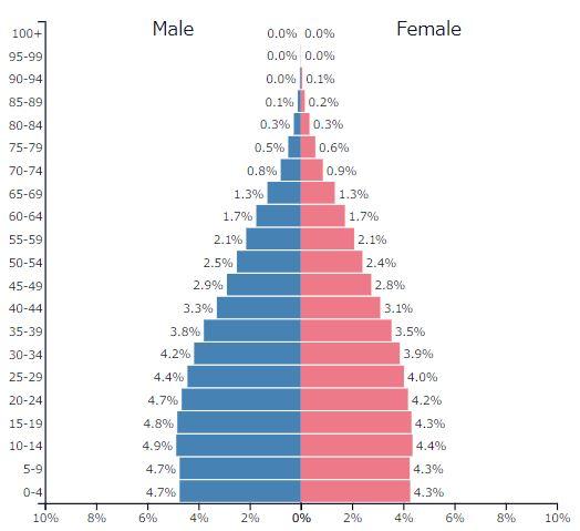2019年インドの人口ピラミッドグラフ