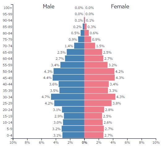 2019年中国の人口ピラミッドグラフ
