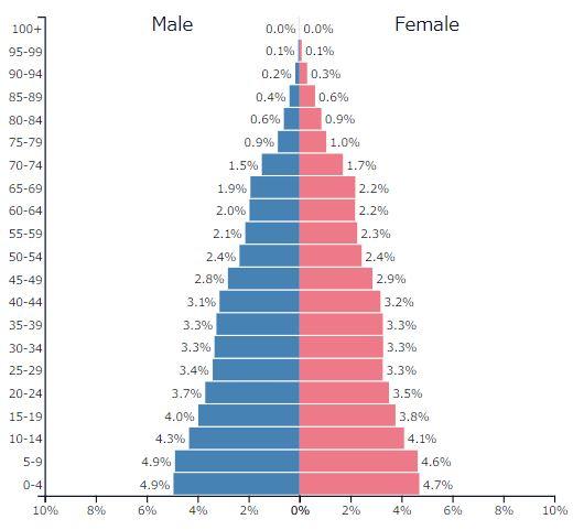 2019年イスラエルの人口ピラミッドグラフ