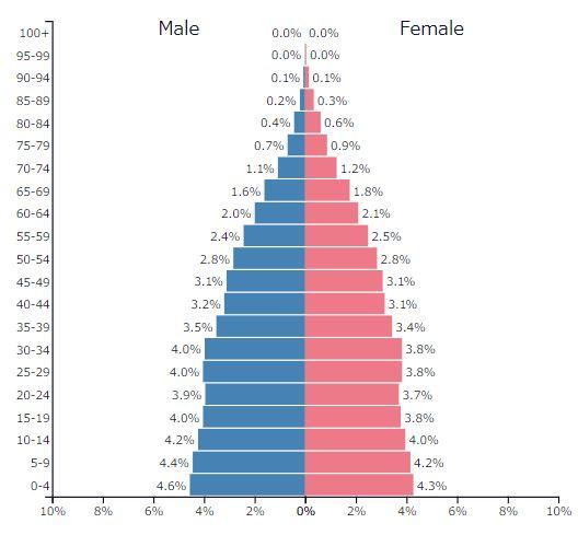 2019年世界の人口ピラミッドグラフ