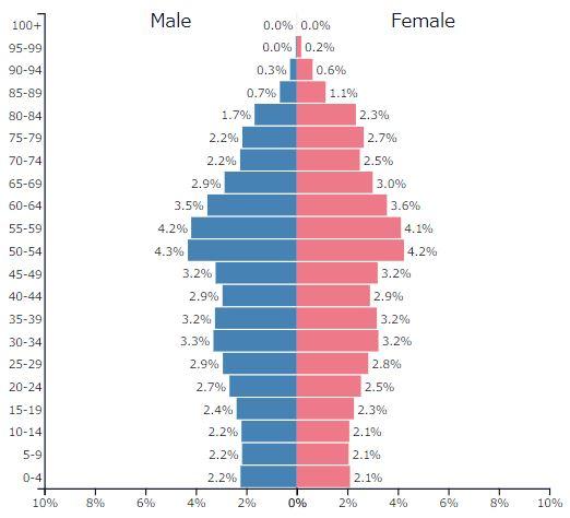 2019年ドイツの人口ピラミッドグラフ