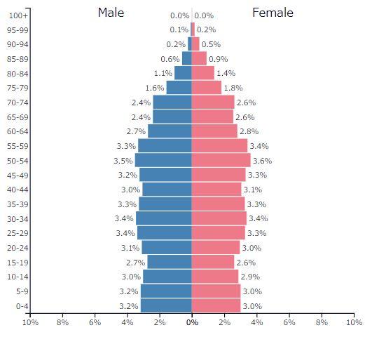 2019年イギリスの人口ピラミッドグラフ