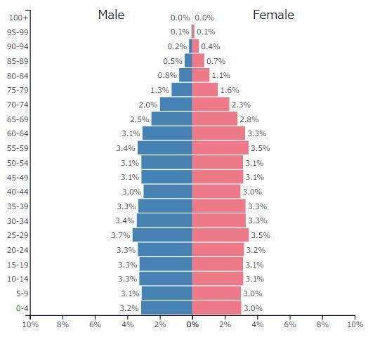 2019年アメリカの人口ピラミッドグラフ