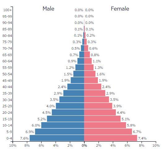 2019年アフリカ全体の人口ピラミッドグラフ
