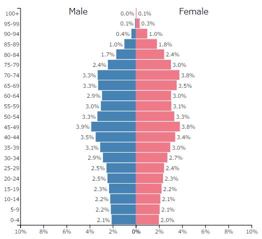2019年日本の人口ピラミッドグラフ