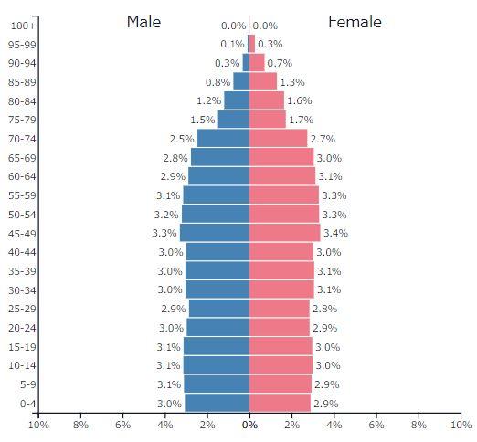 2019年フランスの人口ピラミッドグラフ