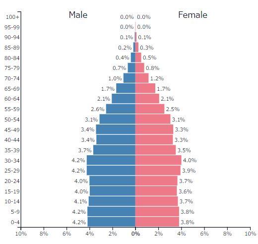 2019年アジア全体の人口ピラミッドグラフ