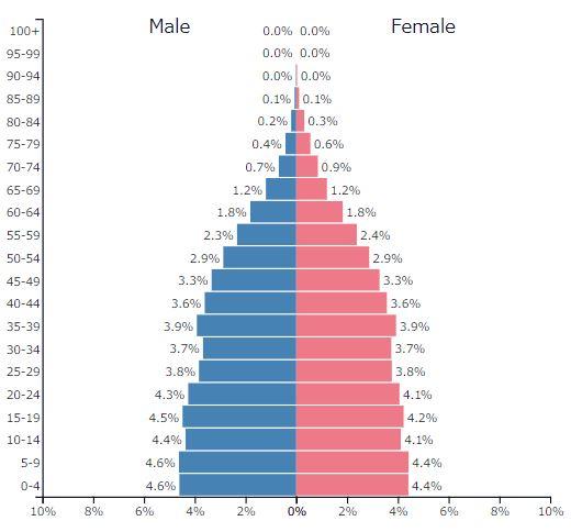 2019年インドネシアの人口ピラミッドグラフ