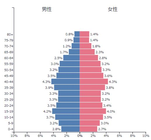 日本人口ピラミッド1989