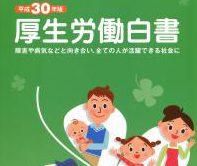 平成30年厚生労働省白書