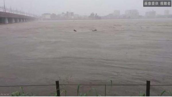 二子玉川付近の目一杯増水している多摩川